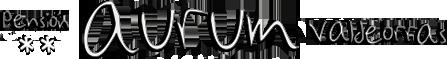 Aurum Pensión Valdeorras.-Las ventajas de un alojamiento de calidad en O Barco de Valdeorras.